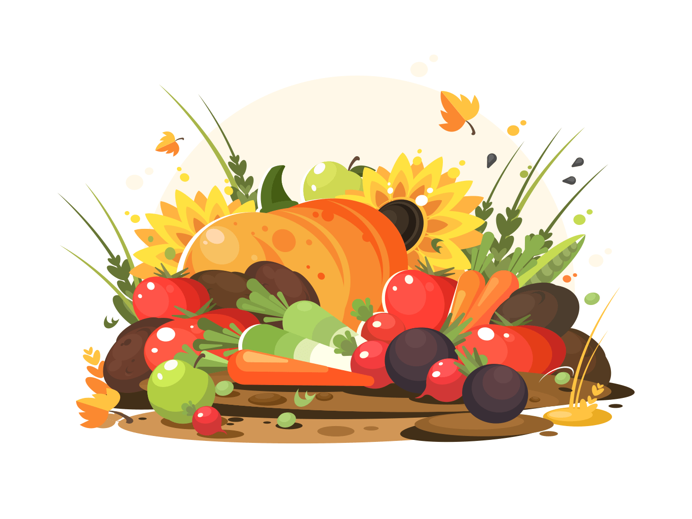 Autumn harvest of vegetables and fruits. Pumpkin and tomatoes, apples and carrots. Vector illustration