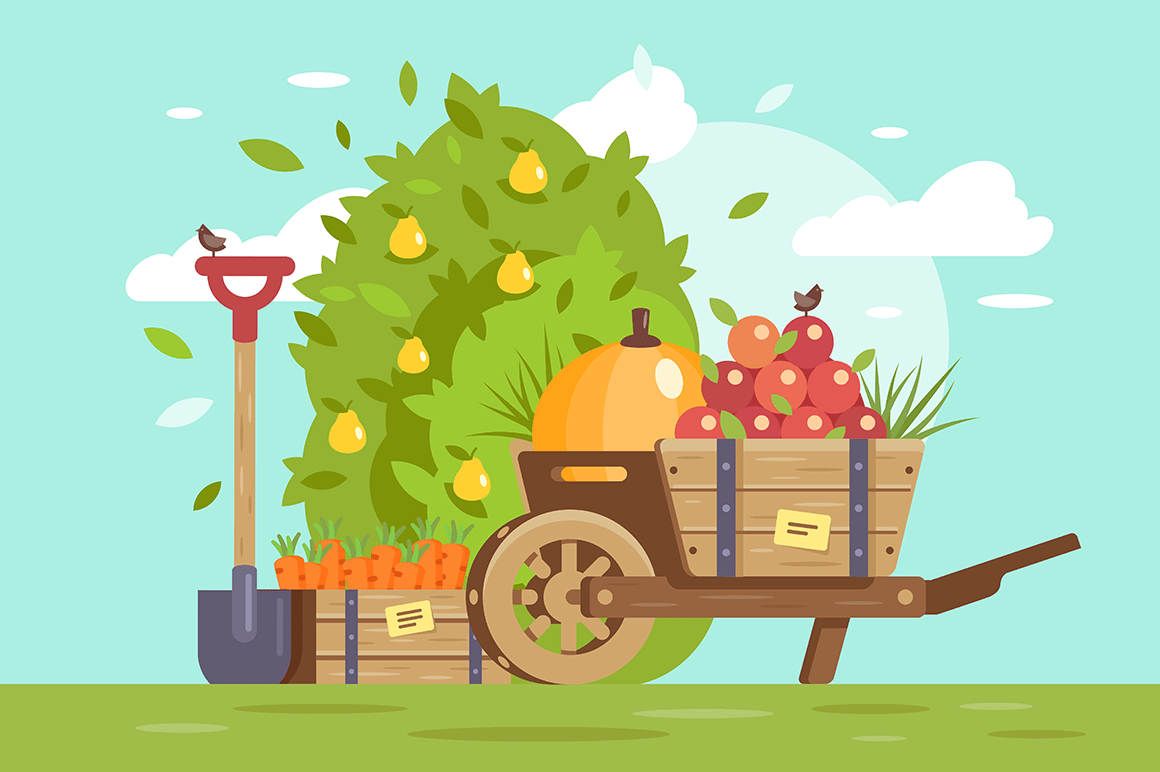 Flat fruits and vegetables, cart with apple, box with carrot and farm equipment, shovel.