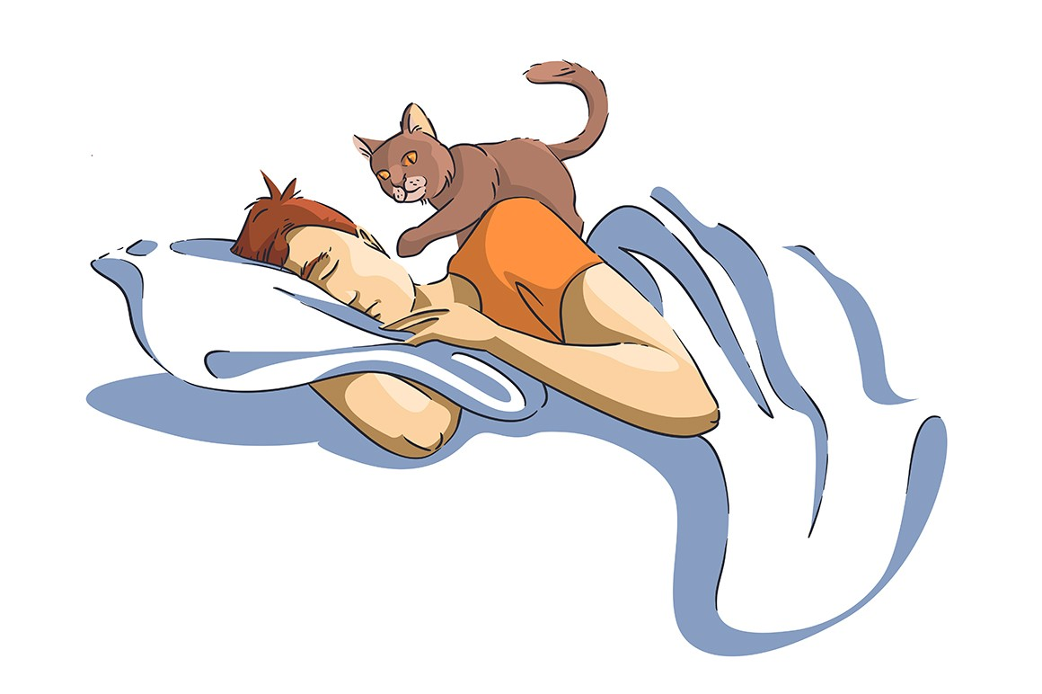 Man sleeping under blanket and cat wakes up vector illustration. Cute fluffy domestic animal touch male face with paw cartoon design. Sweet dreams and relax concept