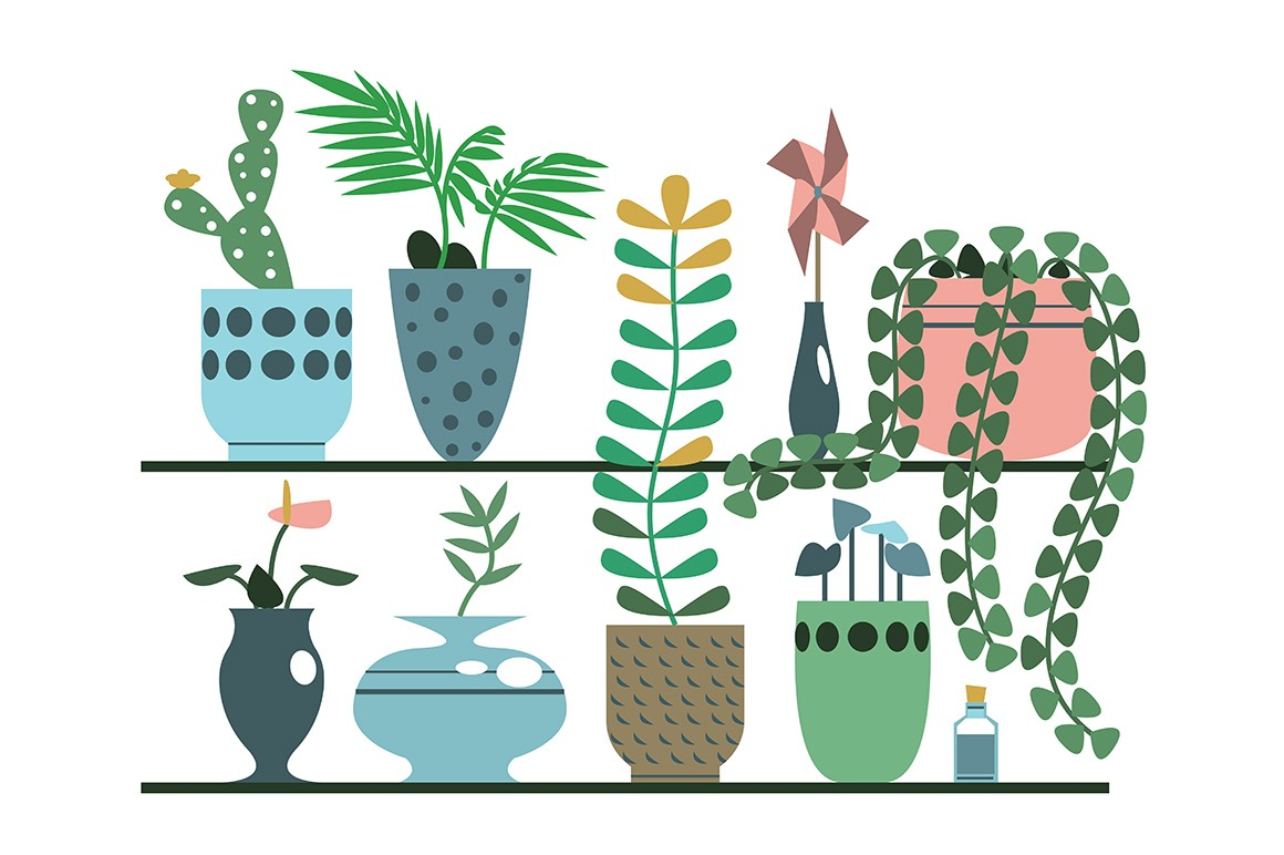 Green plants in pots and vases set vector illustration. Collection consists of flowering cactus, decorative palm, calla lilies, ficus flat style concept. Decorative foliage