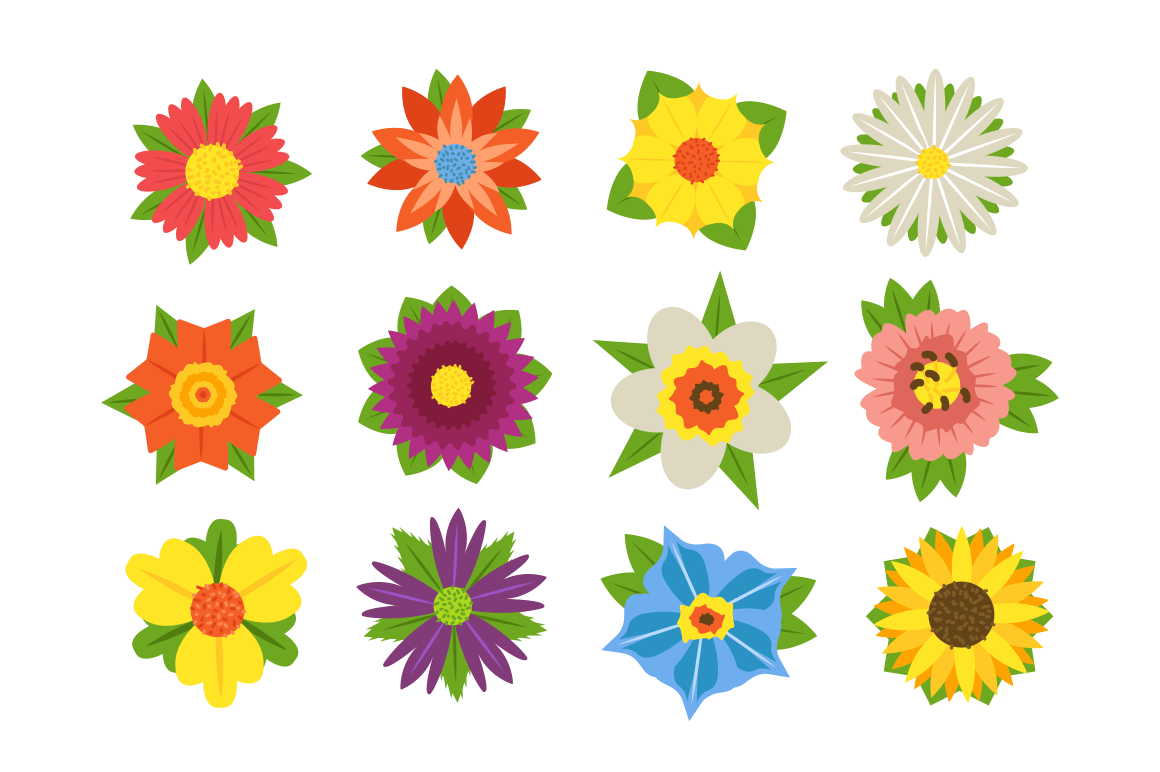 Set of summer flowers vector illustration. Collection consists of beautiful colorful blossoms with different shapes and forms flat style concept. Isolated on white