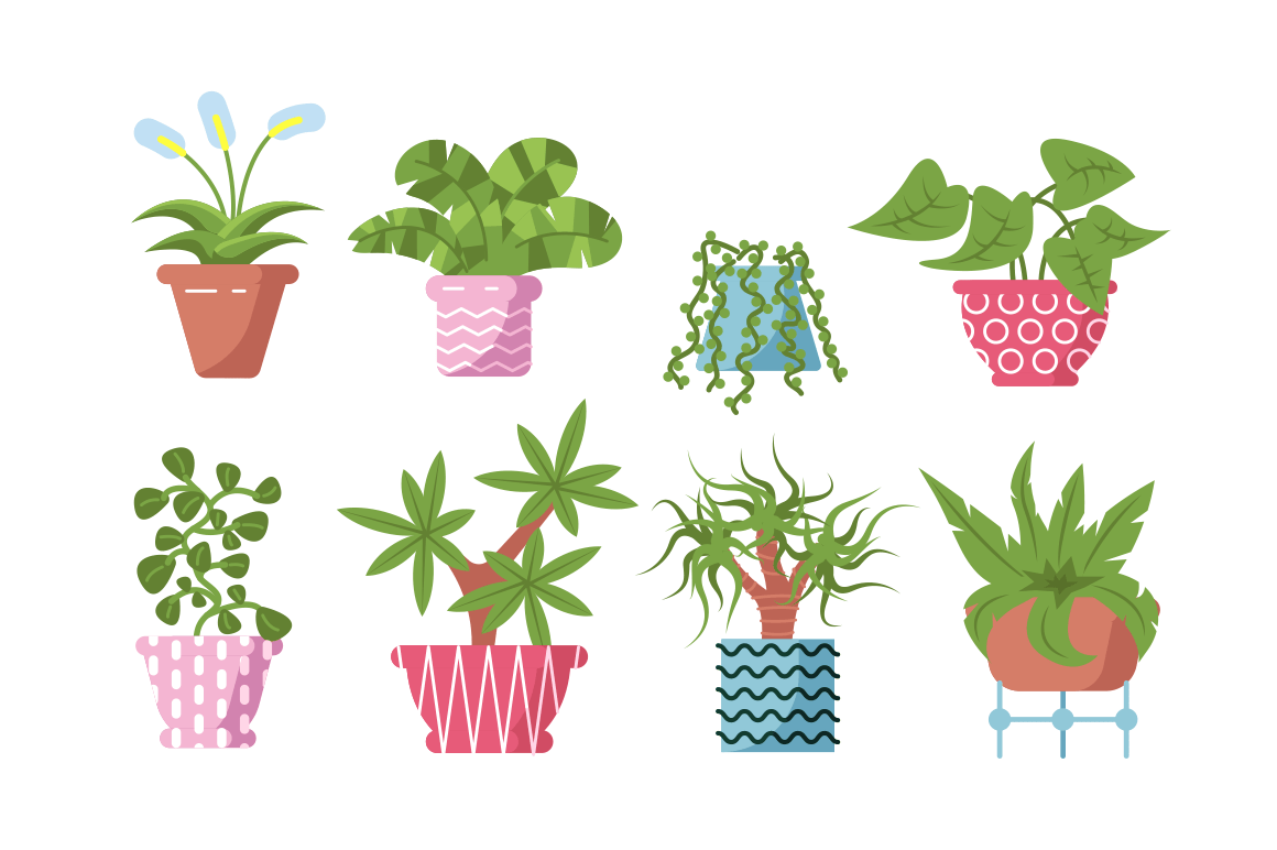 Home plants set vector illustration. Composition consists of different decorative and deciduous flowers in pots flat style design. Isolated on white background