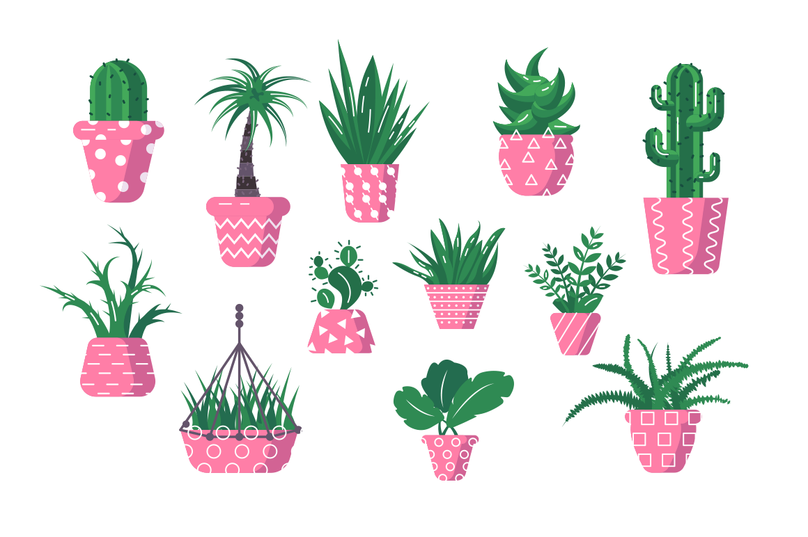 Set of domestic green plants vector illustration. Different types of various kinds of home herbs cactus palm tree fern in flowerpot flat style design. Isolated on white
