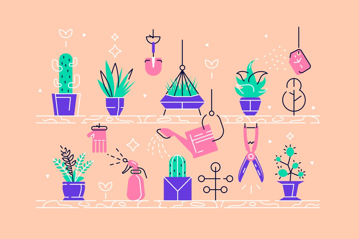 Beautiful home plants set vector illustration. Collection consists of cute green cacti and flowers in pots standing on shelves flat style concept. Isolated on beige