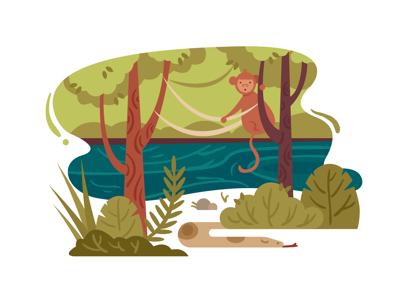 Wild jungle forest illustration