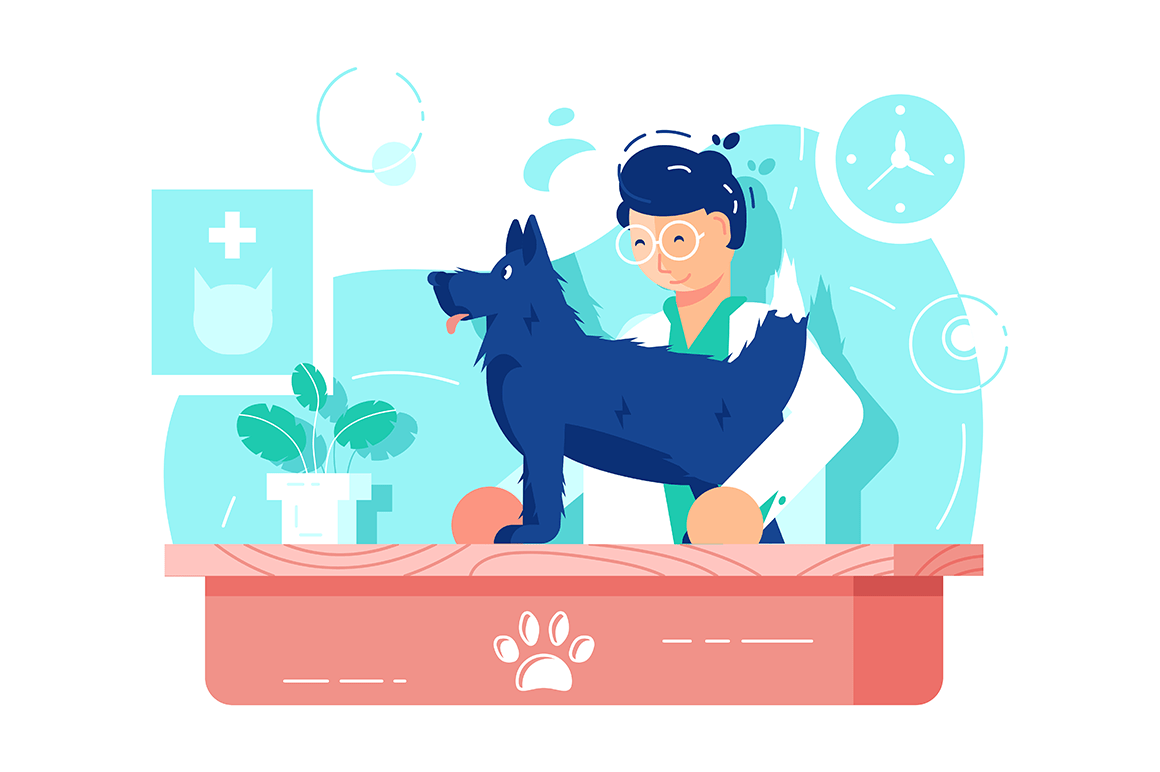 Funny dog at vet clinic vector illustration. Veterinarian doctor treating doggy flat style concept. Doc examining home pet. Hospital interior isolated on white