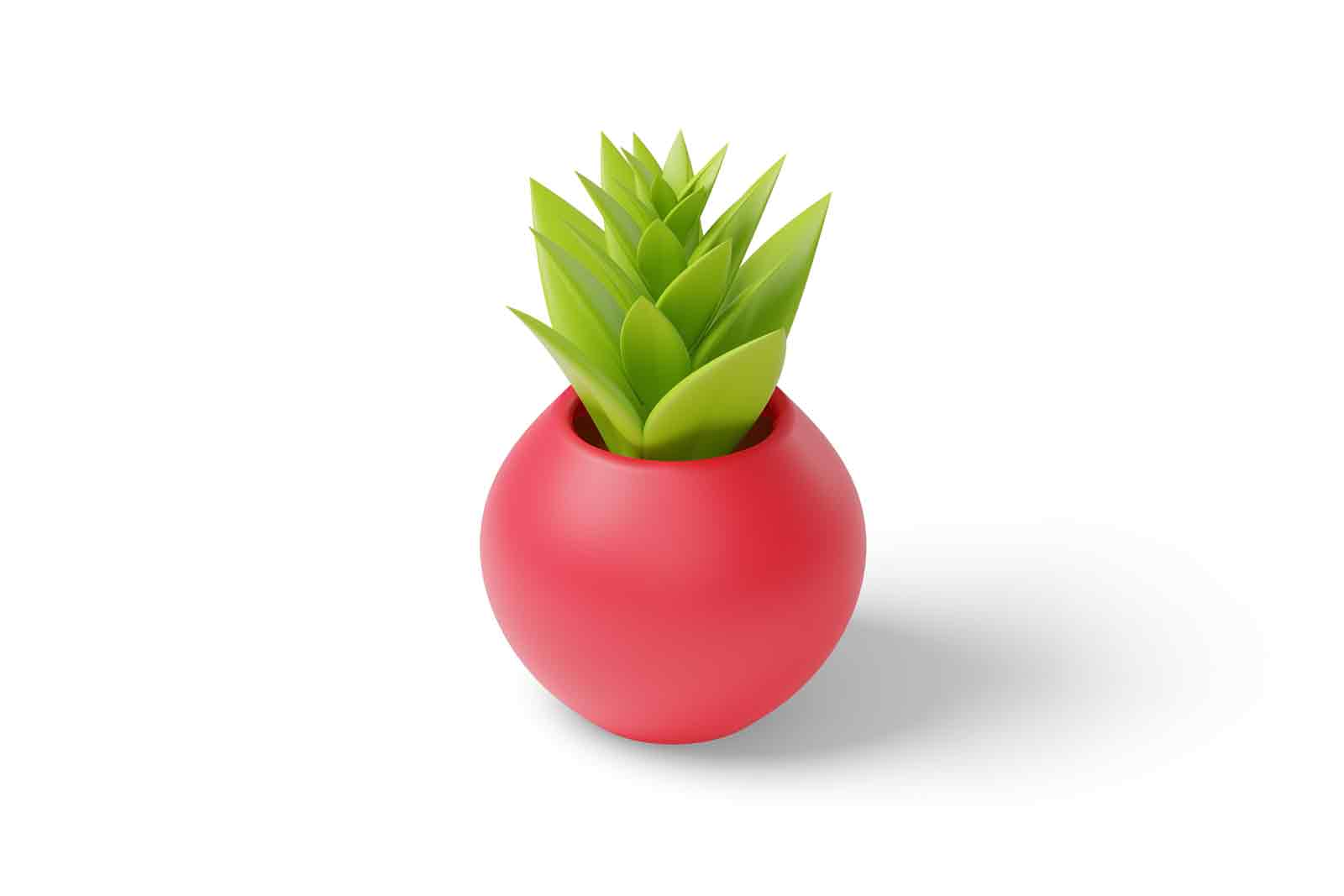 Red flowerpot for decorating the interiors of apartments 3d illustration. Isometric green decorative houseplant in pot. Element for interior design