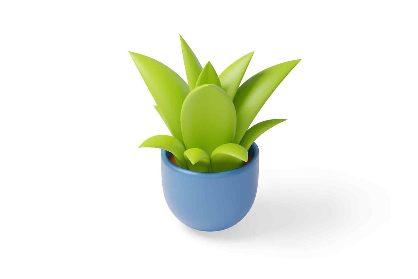 Flowerpots for decorating the interiors of apartments 3d illustration. Isometric green decorative houseplant in pot. Element for interior design