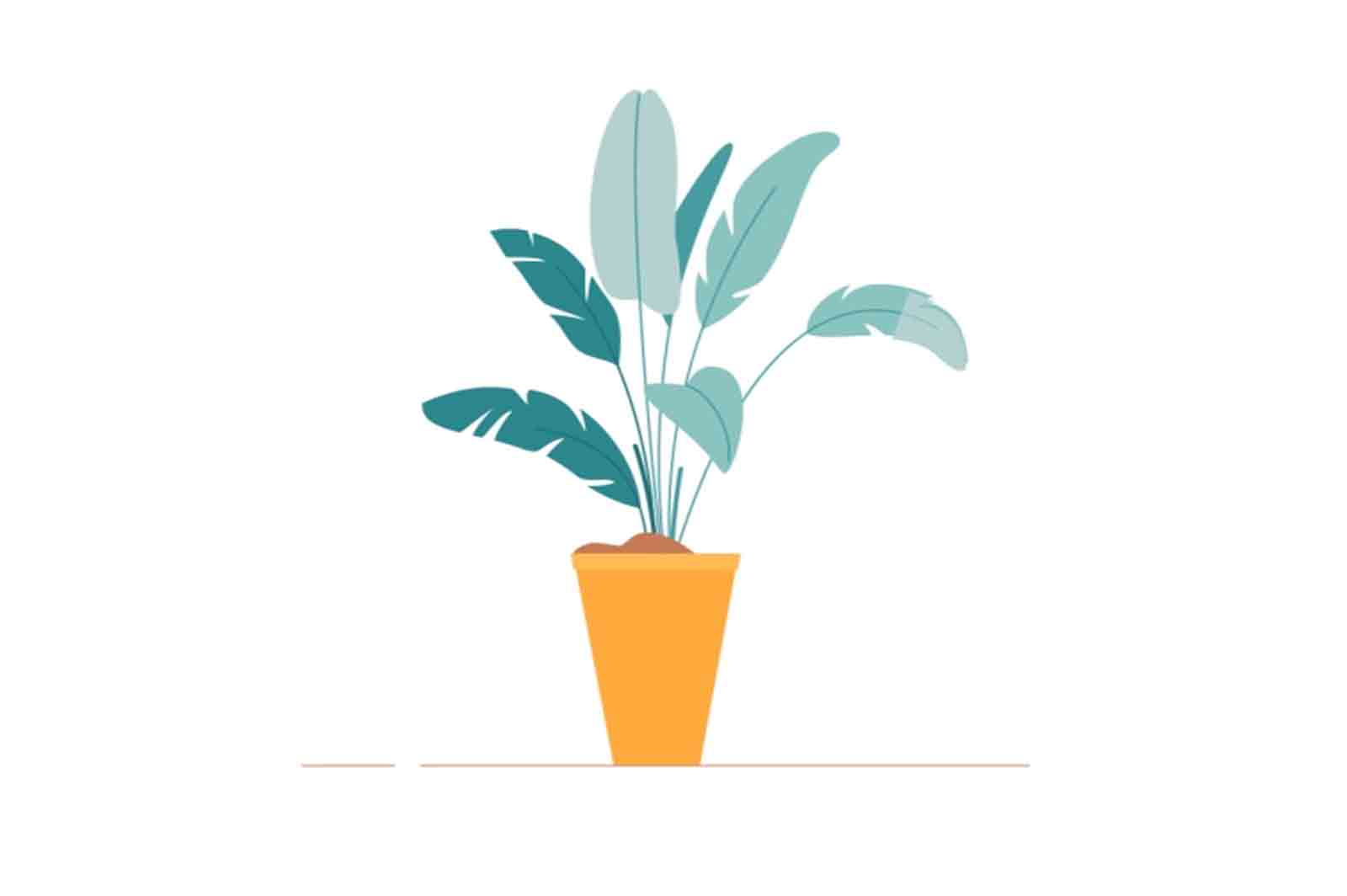 Swaying plant Animation. Lottie, After effects source files.